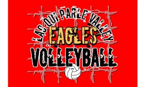 Custom Designs for LqPV Volleyball